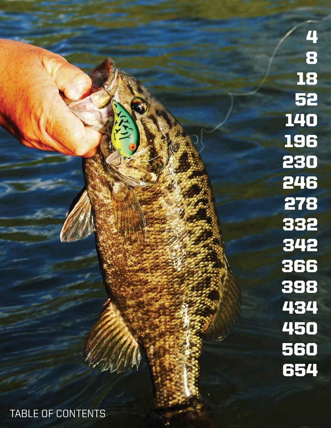 Shad Pearl Bass Striper Fishing Cotton Cordell Deep Diving Crankbait CRD C.C