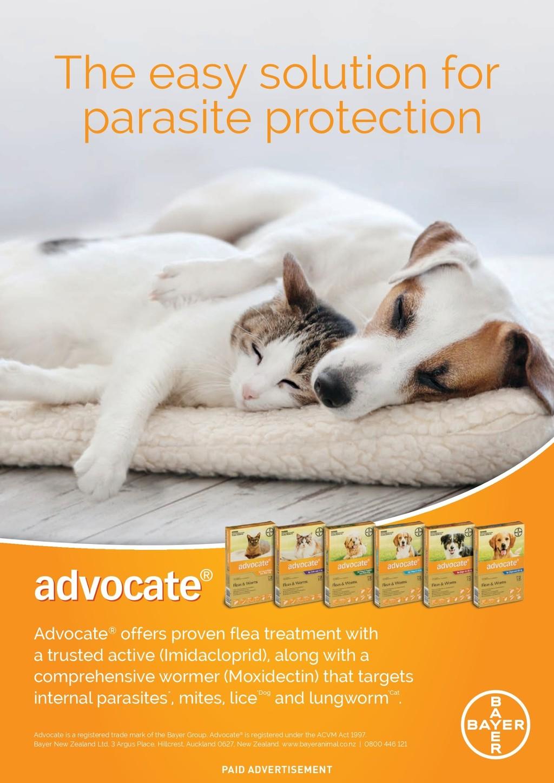 Provet NZ - Partners in Practice (New Zealand)