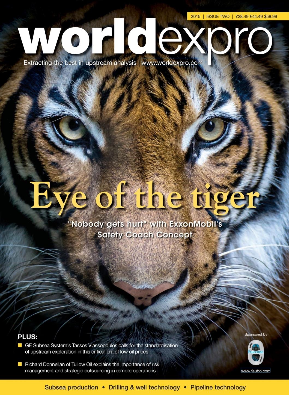 eye of the tiger analysis